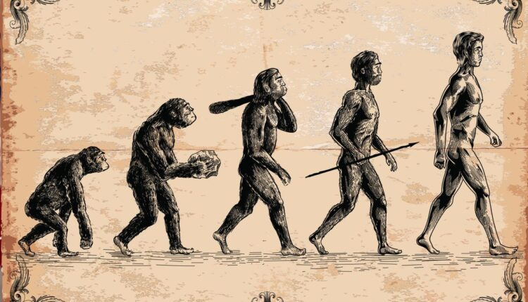 evolution-of-man-0824211.jpg